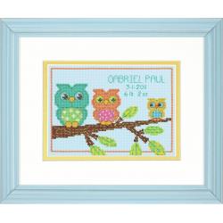 Counted Cross Stitch Kit: Birth Record: Owl Mini